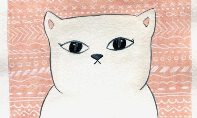 Dicke Katze/ Fat Cat