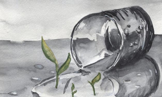 Wasser is Leben/ Water is Life
