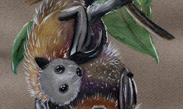 Fledermäuse auf dunklem Papier/ Bats on Tanned Paper
