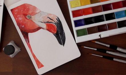 Reisepinselset und ein Flamingo/ Travel Brushes and a Flamingo