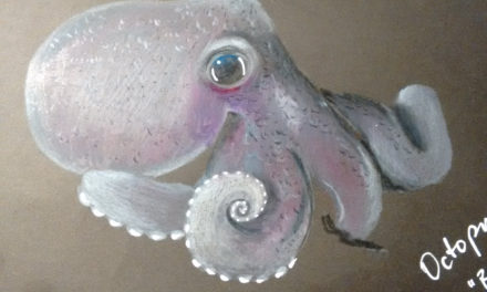 Black Sketchbook: Octopus 2