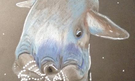 Black Sketchbook: Oktopus 3