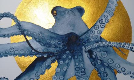 Indigo Oktopus