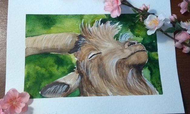 Majestätische Ziegen/ Magestic Goats
