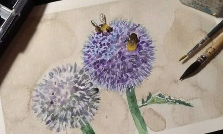 Von Bienen und Neuigkeiten / Bees and News
