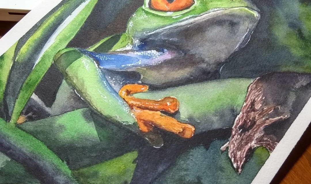 Baumfrosch / Treefrog