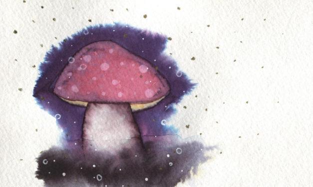 Magischer Pilz/ Magic Mushroom