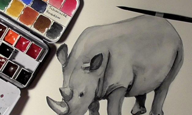 Gefährdete Arten: Nördliches Breitmaulnashorn / Endangered Species: Nothers White Rhino