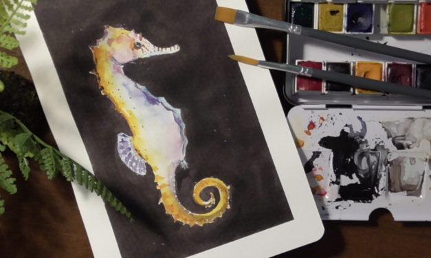 Bedrohte Tierarten: Seepferdchen/ Endangered Species: Seehorses