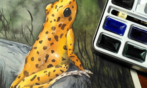Review Koh I Noor Mondeluz Aquarell
